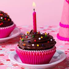 chocolate cupcakes recipe taste of home