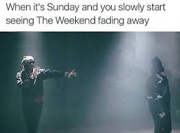 Sunday Night Meme - this hits about 8pm sunday night every sunday and it s the worst