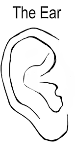 Pair Of Ear Coloring Pages Pair Of Ear Coloring Pages Kids Ear Coloring Page