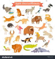 north america animals vector illustration north stock vector