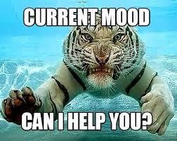 Tiger Meme - meme maker angry tiger generator