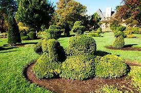 Columbus Topiary Garden - columbus kalisher hospitality art