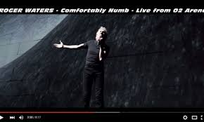 Comfortably Numb Roger Waters David Gilmour Roger Waters Concert Tour