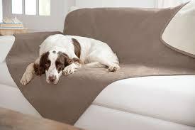 Dog Sofa Blanket Dog Throw Blankets Reversible Dog Blanket Orvis Uk