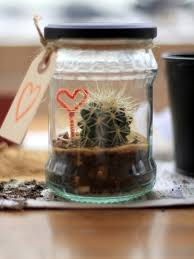 diy recycled cactus terrarium shelterness