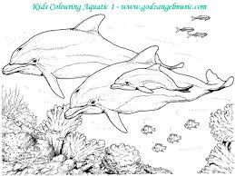 download free coloring pages print beautiful nature