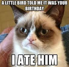 Birthday Weekend Meme - top 20 very funny birthday quotes quotes and humor