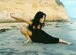 diana lee inosanto stuntwoman and jeet kune do practitioner