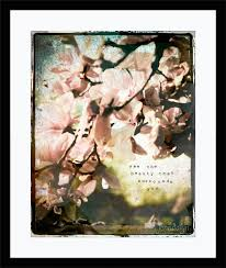 surrounded 8 x 10 fine art photograph magnolia tree photography