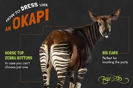 Icon Pop Quiz Halloween Bronx Zoo Bronxzoo Twitter