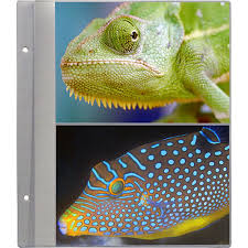 5x7 photo album refill pages pioneer photo albums r57 refill pages for the ps 5781 photo r57