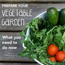 Vegetable Garden Preparation by Planning A Vegetable Garden This Summer What You Should Do Now