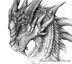 dragon drawings 9 dragon drawings thaxllssillya