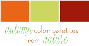 autumn color palettes from nature u2013 my colortopia interior