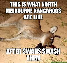 Kangaroo Meme - this is what north melbourne kangaroos are like after swans