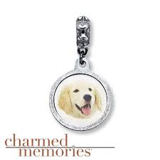 kay jewelers charmed memories kay charmed memories golden retriever charm sterling silver
