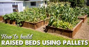 raised bed gardening u2013 realfarmacy com