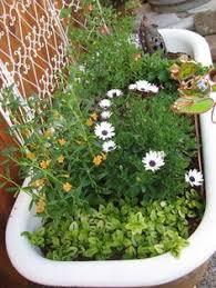 Bathtub Planter Flower Garden In A Bathtub Vintage Bathtub Bathtubs And Garden Art