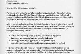 job cover letters hitecauto us