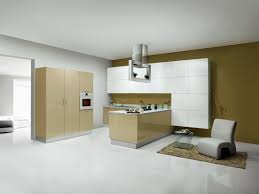 Home Design And Decor Reviews Sleek Modular Kitchen Decor Information About Home Interior And