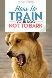 crate training 141 best dog training tips u0026 tricks images on pinterest dog mom