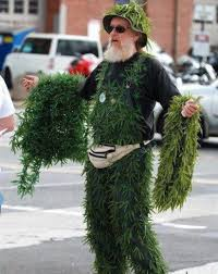 Weed Halloween Costumes Minute Halloween Costumes Cannabis Lover