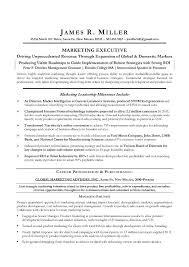 sample executive director resume resume samples and resume help
