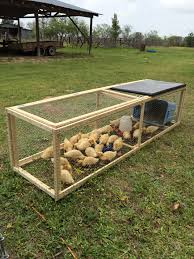 i designed and built this duck rabbit run i need to get busy
