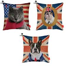 compare prices on cats boston online shopping buy low price cats