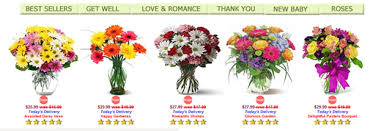 Flower Delivery Express Reviews 28 Flower Delivery Express Reviews Flower Delivery Express