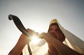 shofar from israel shofars high quality made kosher direct from israel shofars