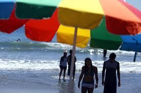 pubic hair at the beach venice beach neighborhood council seeks topless sunbathing for women