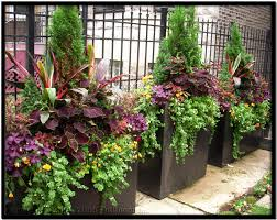 Summer Container Garden Ideas Tu Bloom Chicago Garden Design And Landscape Services