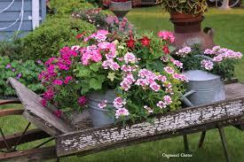 Australian Garden Ideas by Australian Rustic Garden Champsbahrain Com