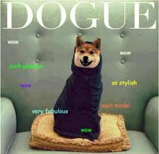 How To Pronounce Doge Meme - why can t we agree on how to pronounce doge doge meme and internet