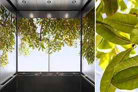 bringing the beauty of nature into interior spaces architect
