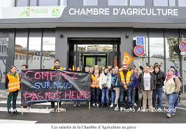 chambre d agriculture tarbes les salariés de la chambre d agriculture en grève site d