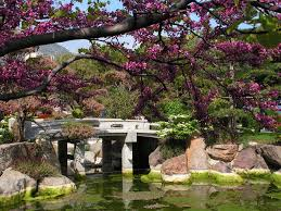 lawn u0026 garden mountainside japanese garden design with stone