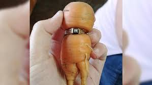 carrot ring woman s lost engagement ring found on carrot atlanta news