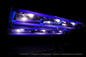 Refugium Light Tank Of The Month May 2008 Reefkeeping Com