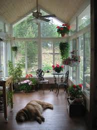 small sunroom design green plant interior decor and parquet