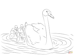 mute swan with cygnets coloring page free printable coloring pages