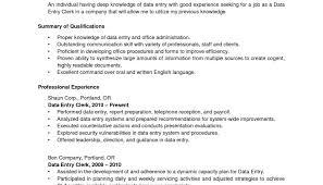 new resume for data entry jobs cios job resume