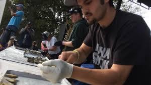 wellfleet oysterfest shuck off championship round 2017 youtube