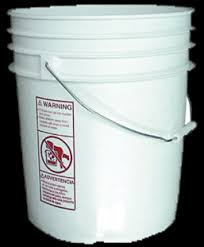 vegetable garden anywhere 5 gallon buckets survive our collapse