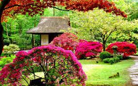 images of beautiful gardens beautiful garden wallpapers wallpaper cave