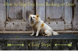 dog barks when we leave how to stop dog from barking at door in 4 easy steps 2017