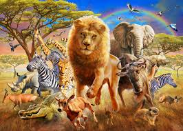 african stampede wall mural african stampede wallpaper african stampede wall mural photo wallpaper