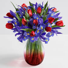iris flower arrangements iris flowers online proflowers
