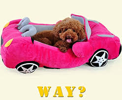 pet beds for dogs and cats u2013 skarro u2013 be fun u2013 live life in color